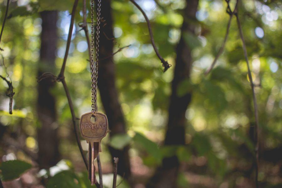 Schlüssel hängt an einem Baum
