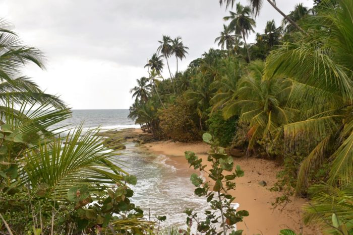 Manzanillo Caribbean Costa Rica