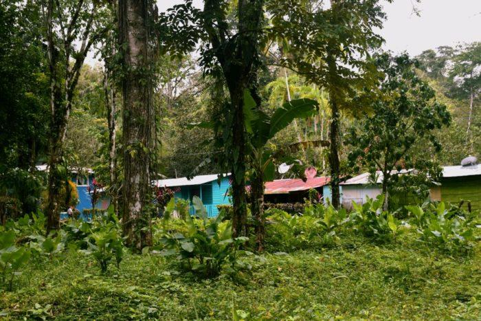 Puerto Viejo, Costa Rica, Caribbean